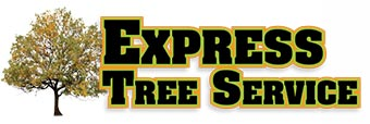 Express Tree Service Logo